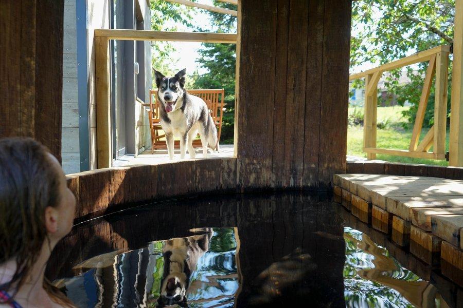 Le bain bordelais de la Tiny House Lumen
