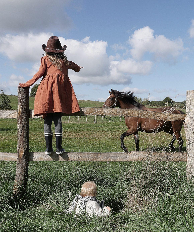 Les chevaux du Country Lodge